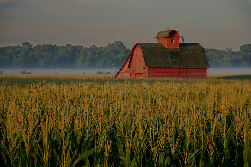 farm and crop insurance in Aurora STATE | Wave Insurance Partners